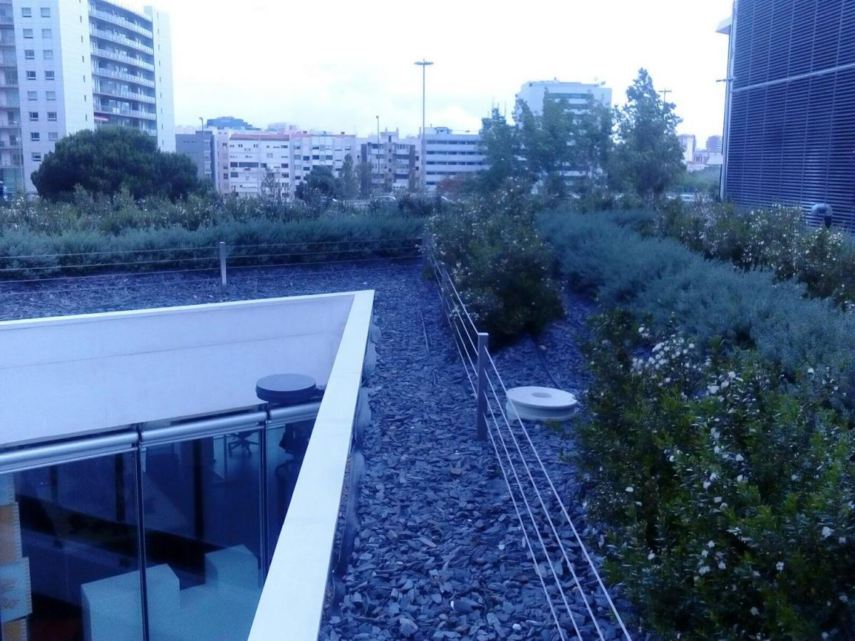 lisboa green roof santander