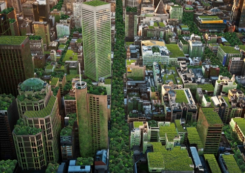 The Impact of Green Roofs – An article by the National Green Roof Association