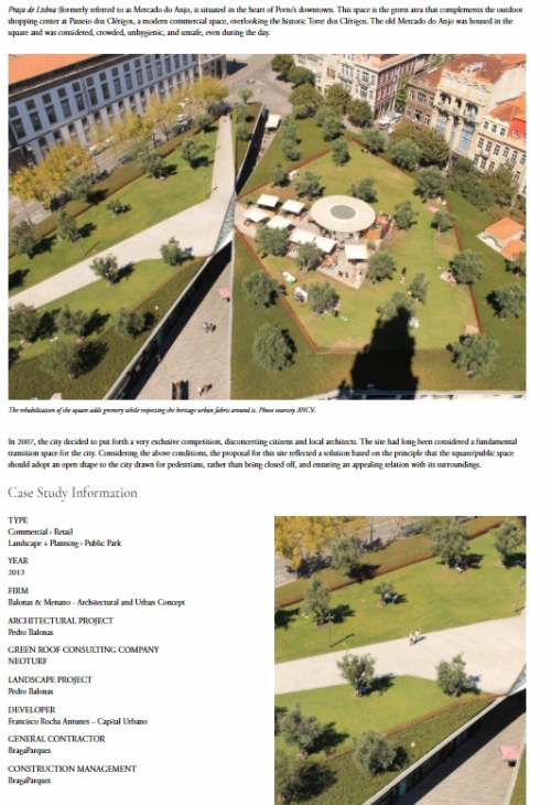 A Historic Square Revitalized with an Olive Grove Green Roof in Porto, Portugal - A Country Embracin