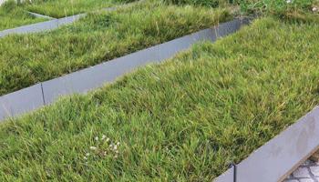 Projeto entre membros da ANCV utiliza cortiça para novas soluções de Coberturas Verdes