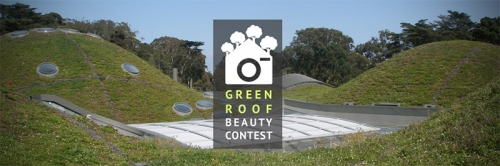GREEN ROOF PHOTOGRAPHY CONTEST